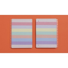 Capa e Contracapa Caderno Inteligente Grande Arco iris Pastel